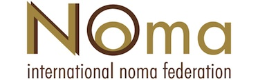NoNoma logo 373*116